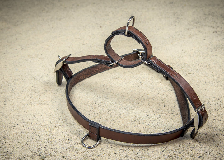 coast-line-2 - Leather Harness - Harness