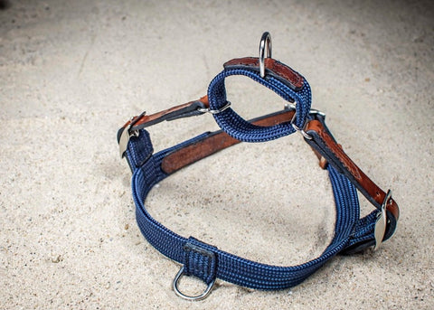 Rope & Leather Harness