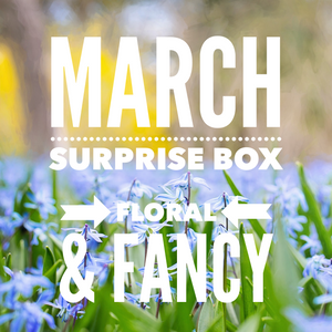 March Surprise Bow box