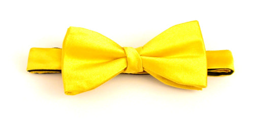 Gold Plain Platinum Silk Bow Tie by Van Buck
