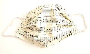 Face Mask Pleated Music Notes