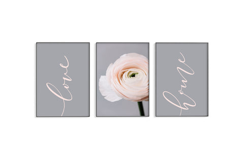 Blush Love, Ranunculus & Home Trio Set