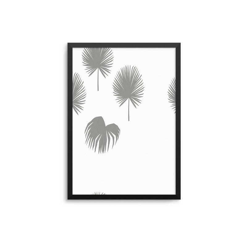 Grey Fan Palms