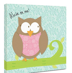 "Canvas Kudos ""Baby Owl"" Decorative Sign, 12 ""x 12"""