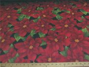 Premium Anti-Pill Poinsettia On Black Fleece F1525