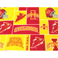 Premium Anti-Pill Iowa State Fleece B86