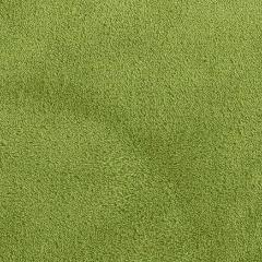 Olive Green Minky Spa Fleece