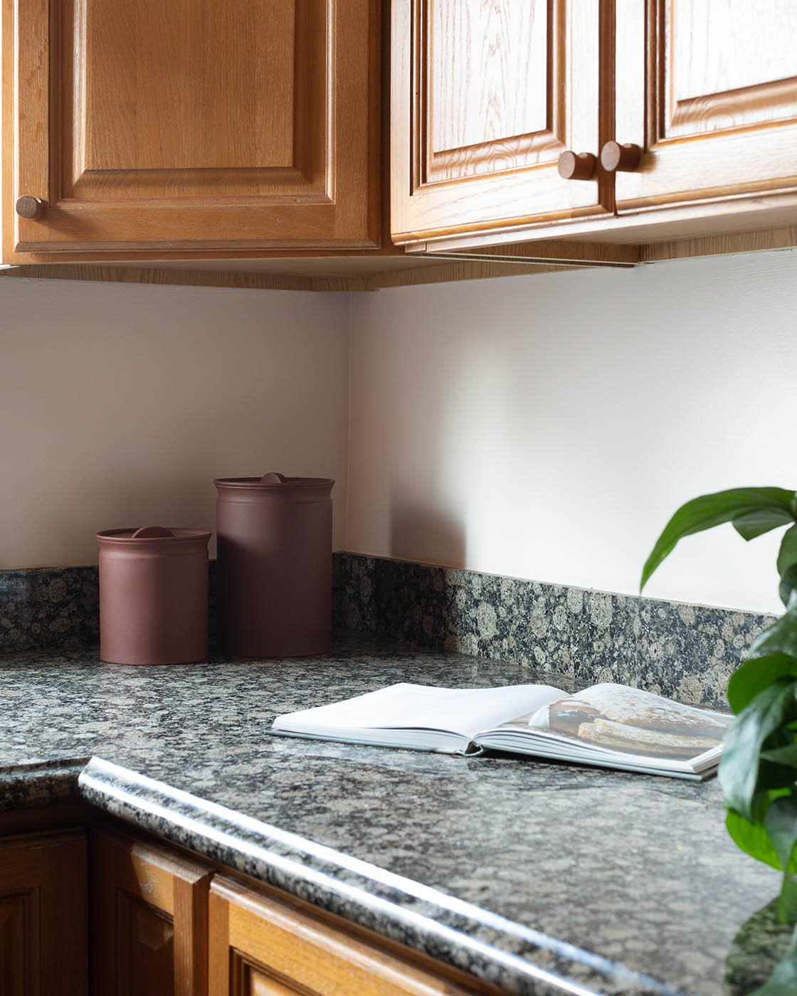 """On choosing pink paint """"I was trying to embrace the warm-toned cabinetry and bring it into 2019 with a monochromatic color scheme, so the pink color Wing It felt natural yet unexpected. Beige or white felt too boring and of a similar decade as its current design and anything more contrasted (green, blue) would've felt too busy."""""""