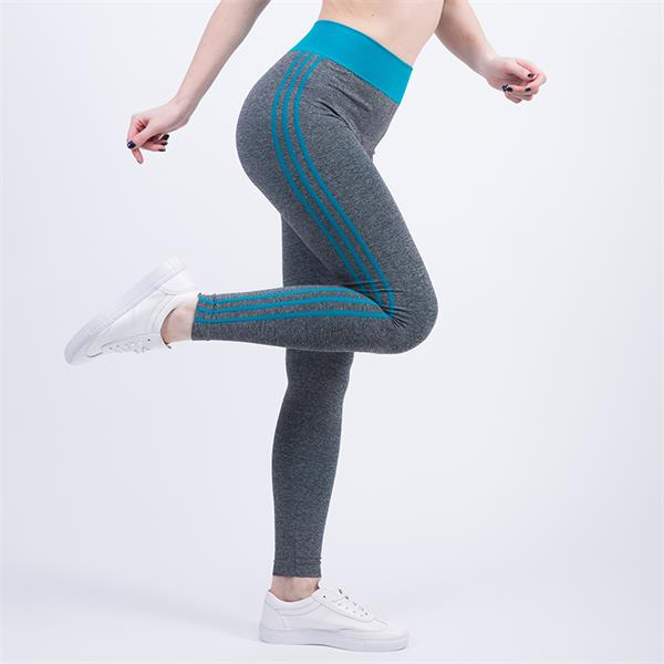 High Waist Fitness and Yoga Pants