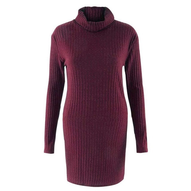 Long Length Knitted Turtleneck