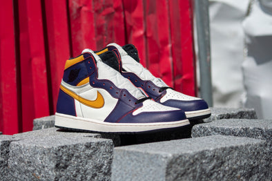 Nike SB x Air Jordan 1 Court Purple LA/Chicago