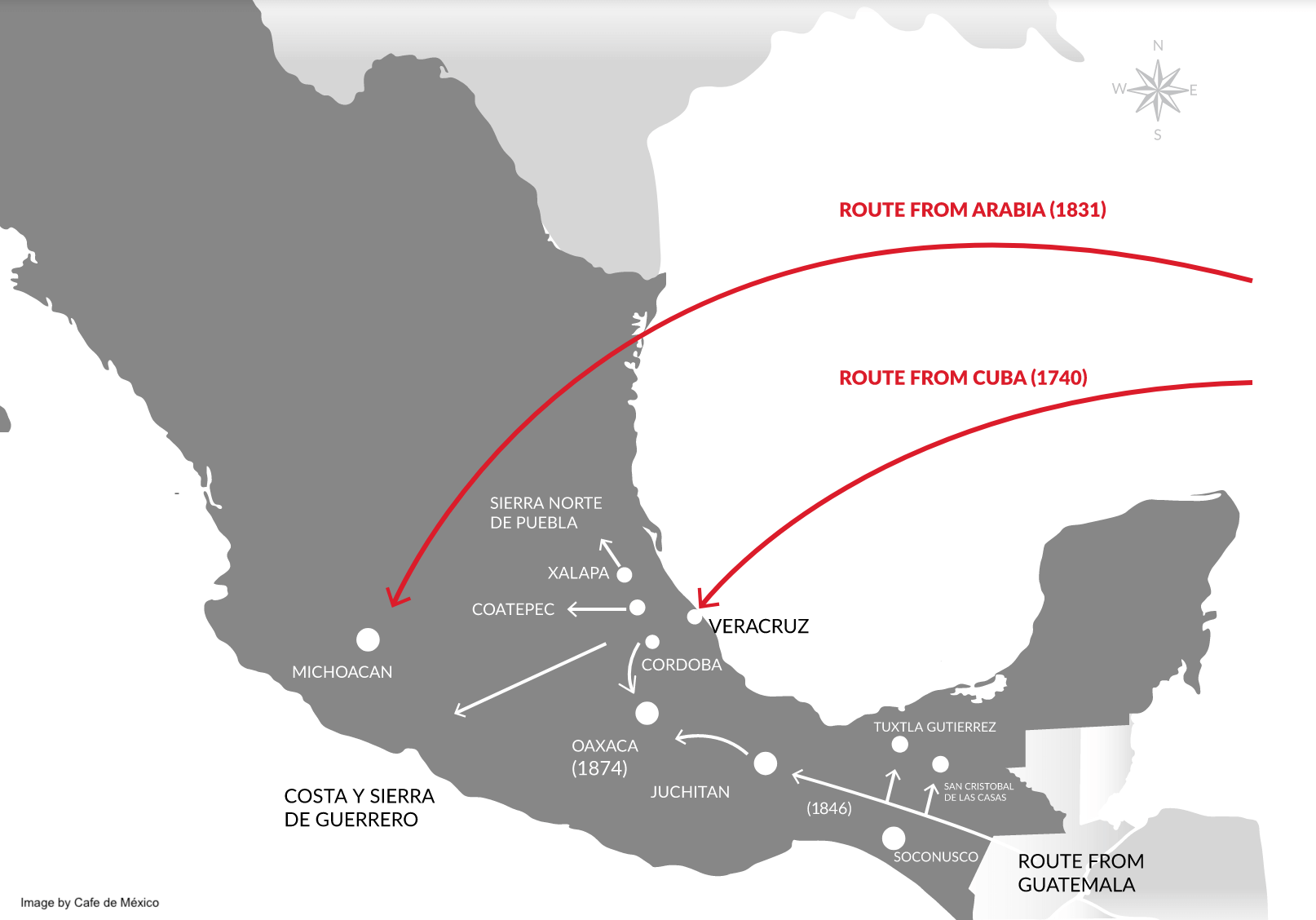 Mexican coffee origin routes