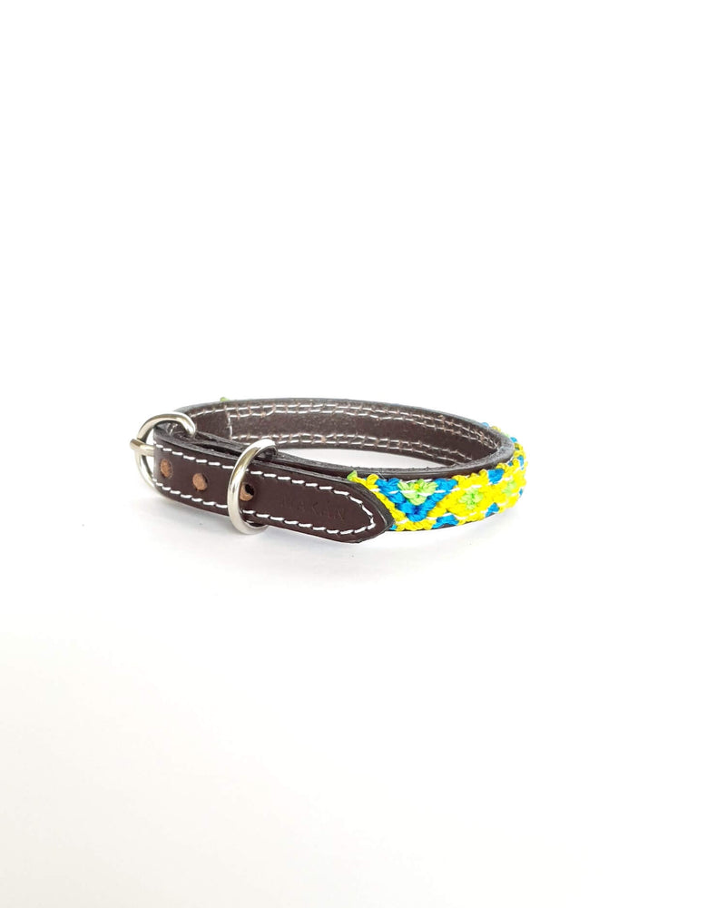 products/Leather-dog-collar-extra-small-blue-green-yellow2.jpg