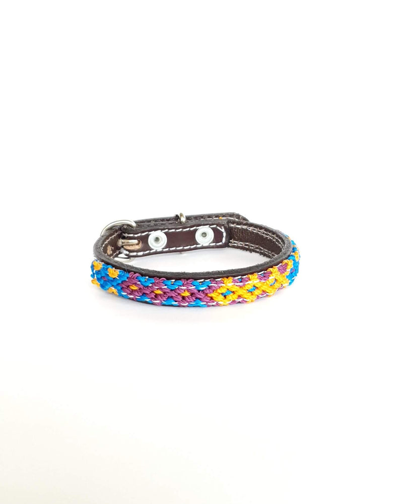 products/Leather-dog-collar-extra-small-blue-yellow-purple.jpg