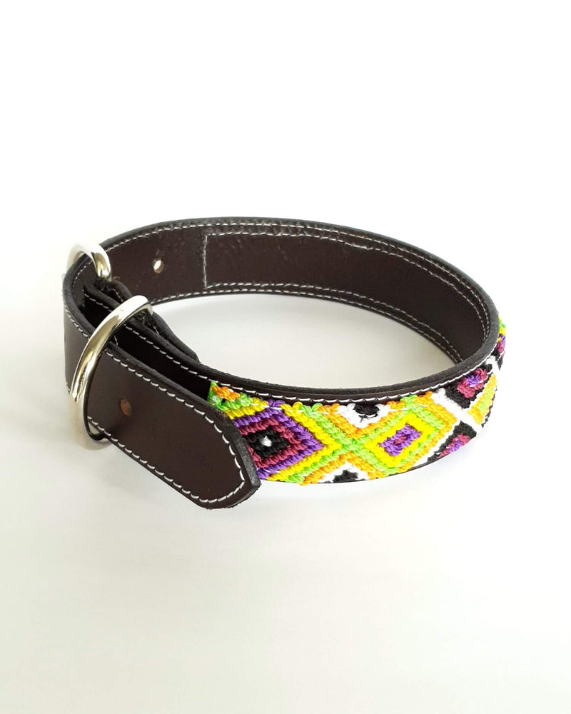 products/Leather-dog-collar-medium-green-yellow-purple2.jpg