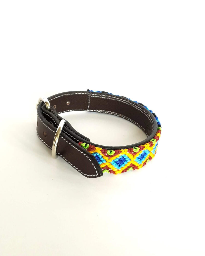 products/Leather-dog-collar-small-blue-green-orange2.jpg