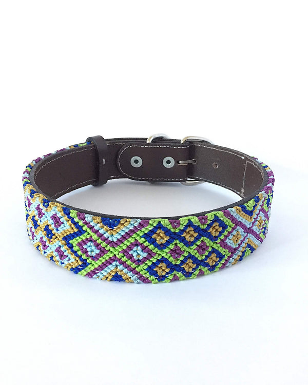 Makan Large Size Dog Collar Lime Green & Dark Blue color front view