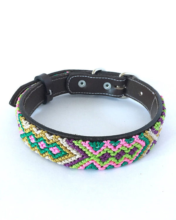 Makan Medium Size Dog Collar Pink & Green front view