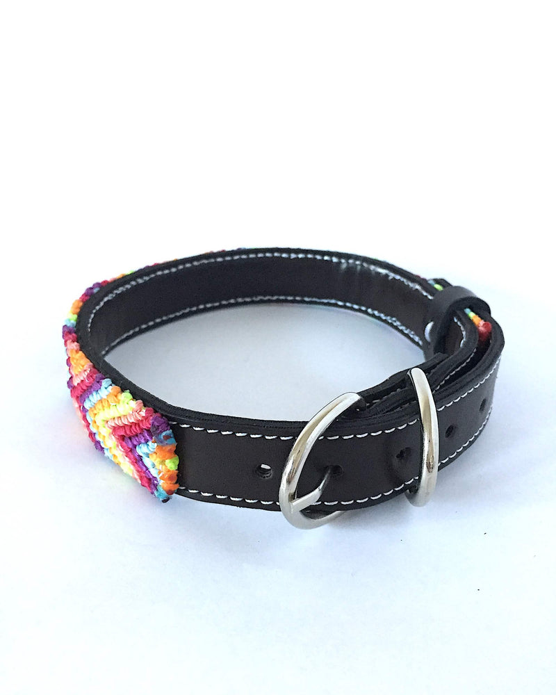 products/Makan_Medium_Size_Dog_Collar_44_buckle.JPG