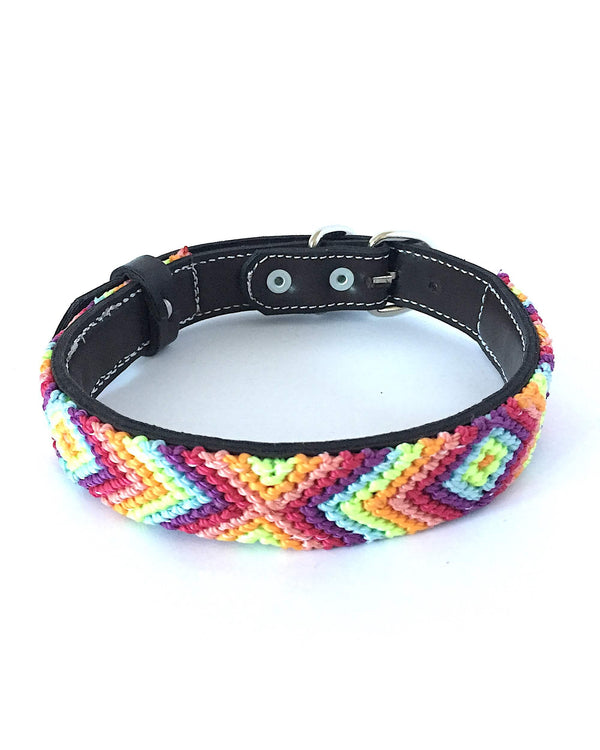 Makan Medium Size Dog Collar Orange, Green & Purple front view