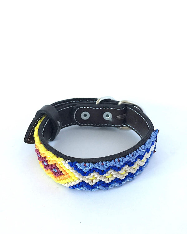 Makan Small Size Dog Collar Yellow & Blue front view