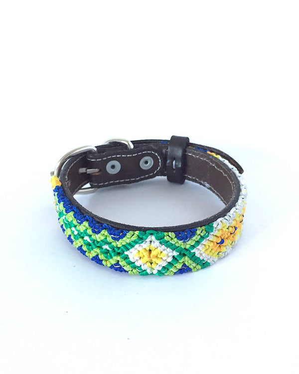 Makan Small Size Dog Collar Green, Blue & Yellow front view