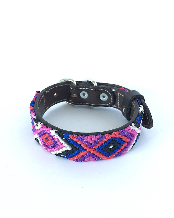 Makan Small Leather Dog Collar Purple, Blue & Red front view