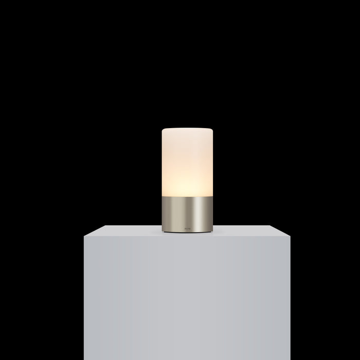 totem: frosted satin nickel