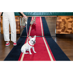 Load image into Gallery viewer, Standard Red Ombre Cotton Rope Dog Leash - Shop The Standard