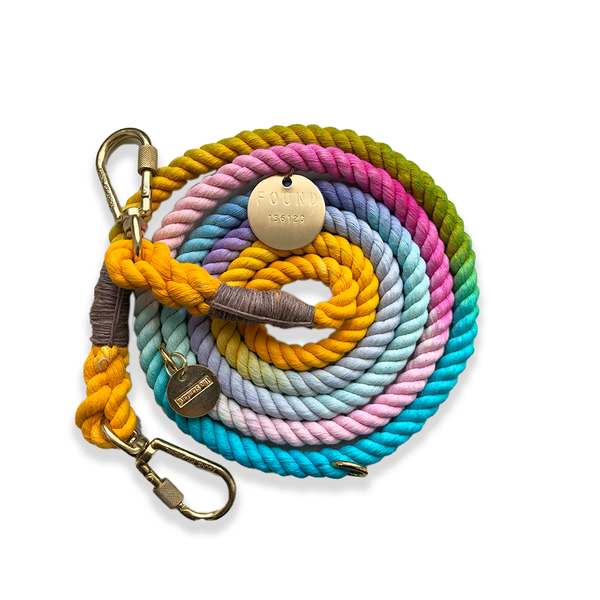 Resort Inspired Ombre Cotton Rope Dog Leash - Shop The Standard