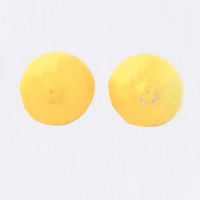 Pierced Lemon Cropped T-Shirt