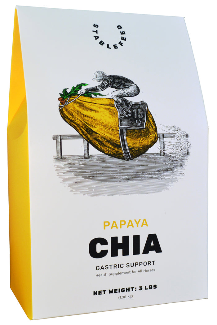 Papaya Chia Gastric Support by StableFeed
