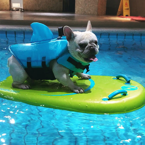 Frenchie Corner® Cute Safety Shark Life Jacket
