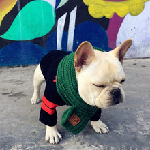 Frenchie Corner® Scarfs (5 Colors Available)