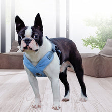 Frenchie Corner® Reflective Harnesses (Available in 3 Colors)