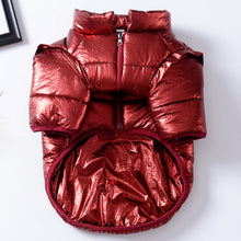 Frenchie Corner® Retro Shiny Jacket