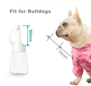 Frenchie Corner® Water Bottle