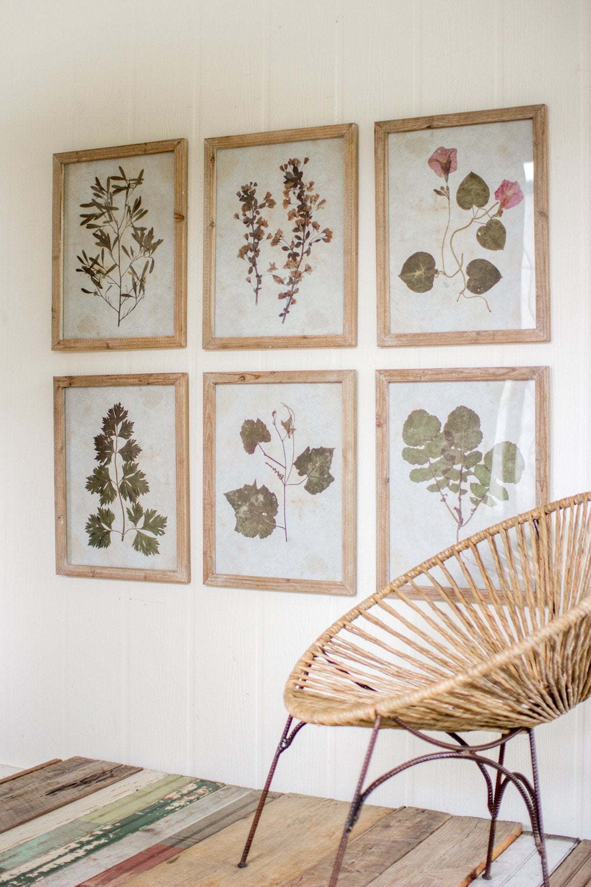 Set of 6 Leaf Prints Under Glass - Hearts Attic