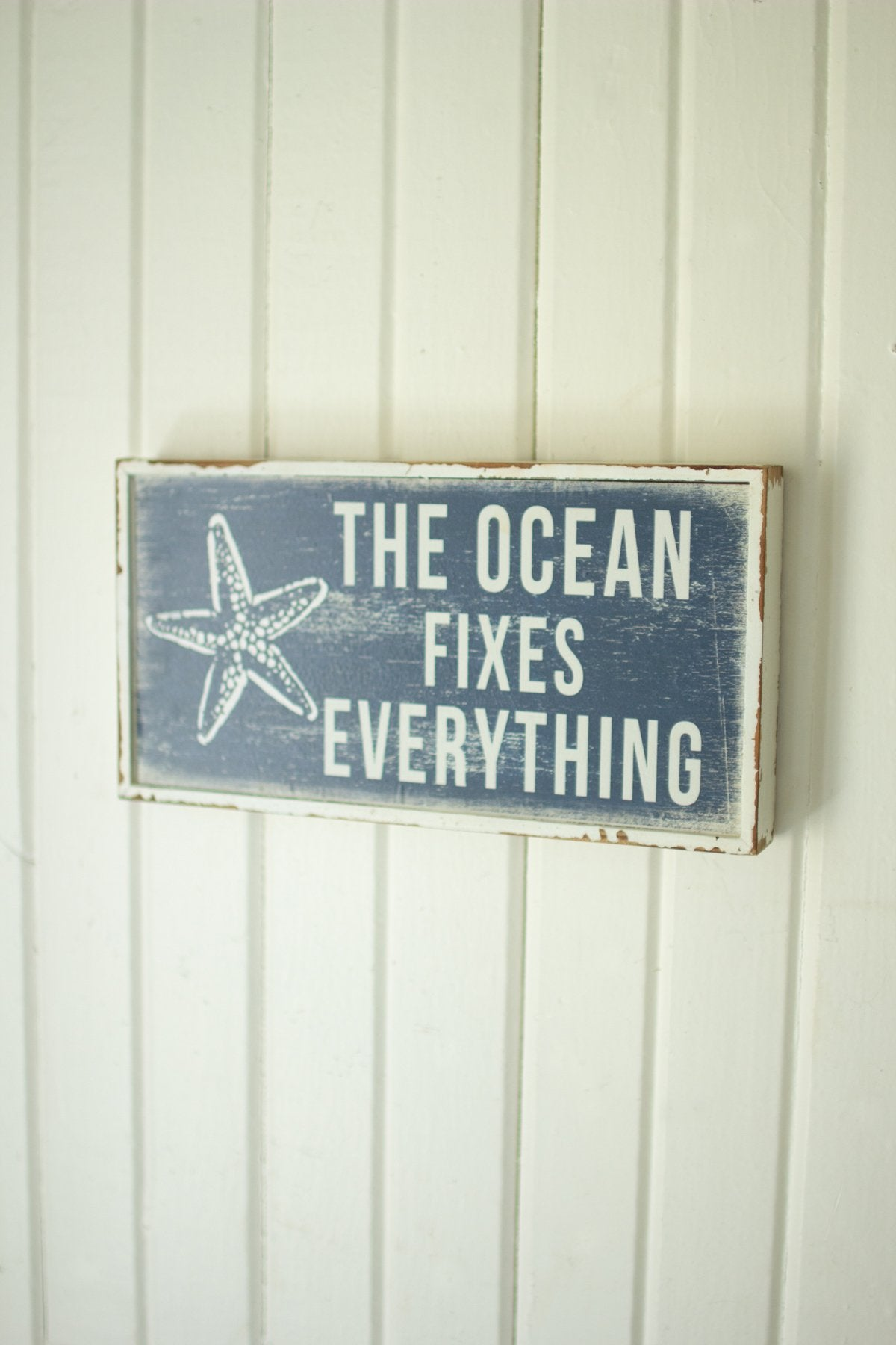 The Ocean Fixes Everything Sign