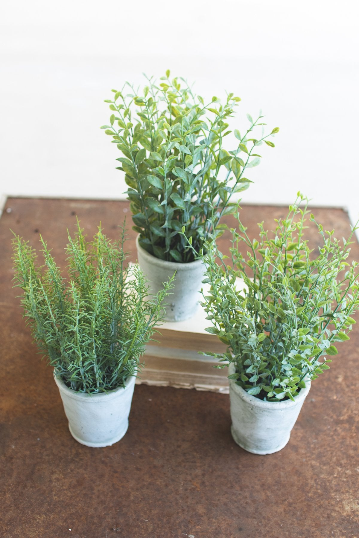 Set of 3 Artificial Herbs In Cement Pots