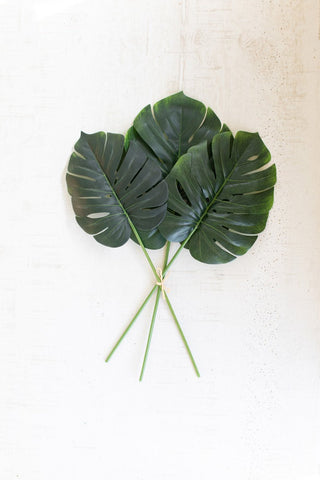 Set Of 6 Large Monstera Leaf Bundles