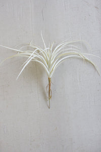 Set Of 6 White Air Plants Large