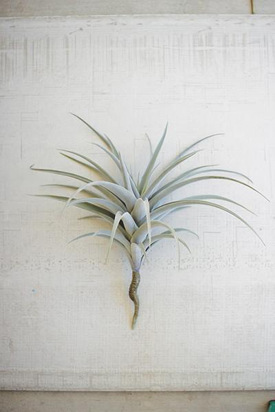 Giant Artificial Airplants - Set Of 4