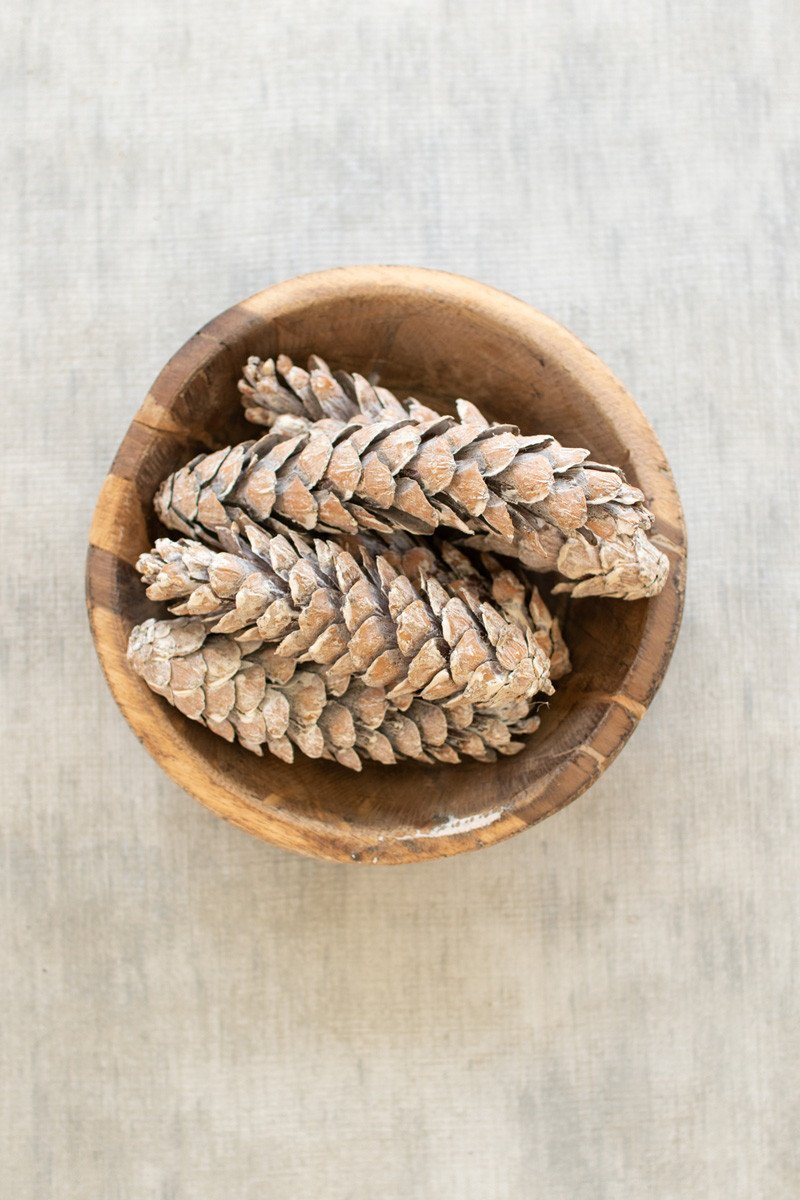 Bag Of 72 Strobus Pine Cones  -  Frosted White