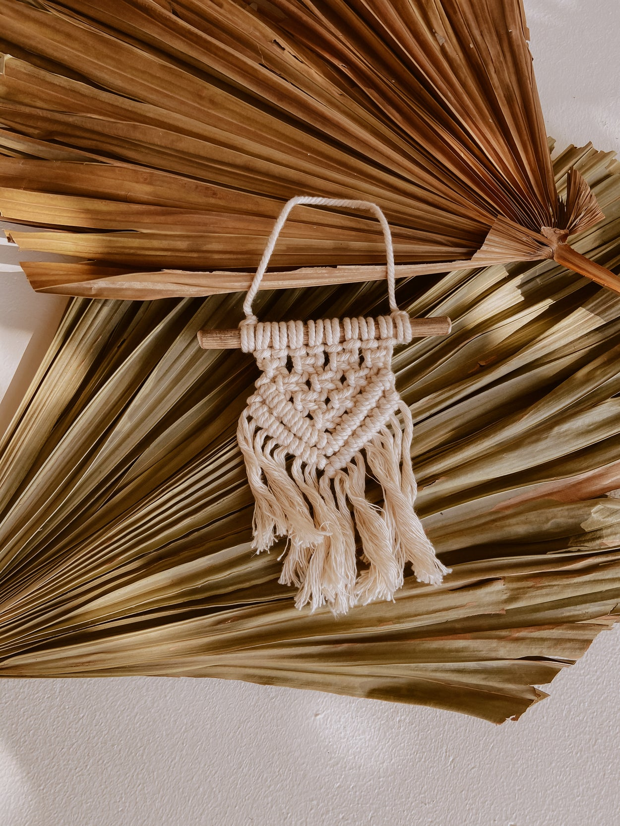 Ivy Mini Macrame Wall Hanging