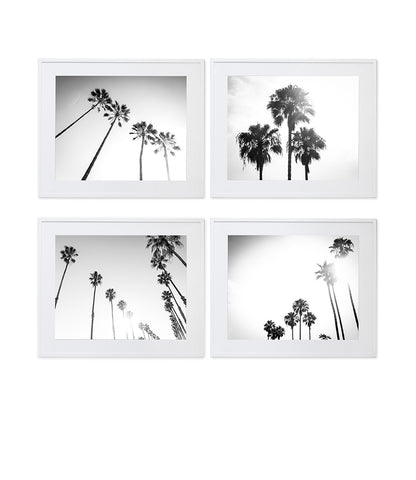 SET OF 4 BLACK AND WHITE CALIFORNIA PALM TREE PRINTS