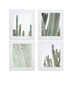 SET OF 4 CACTUS PRINTS