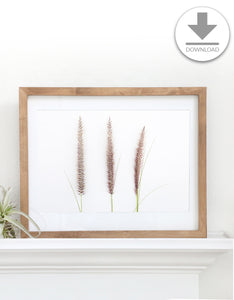 Printable Art // Instant Download // Cattail Print