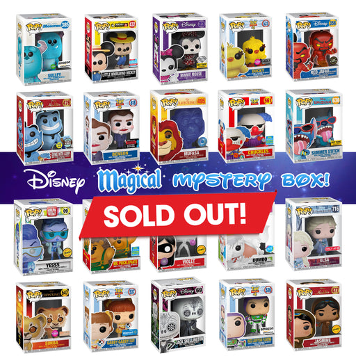 "K-DOG & FISH: ""DISNEY MAGICAL"" MYSTERY BOX! (SOLD OUT)"
