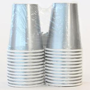 Solid Silver 9oz Hot/Cold Paper Cup 24 Ct. (Case Qty: 576)